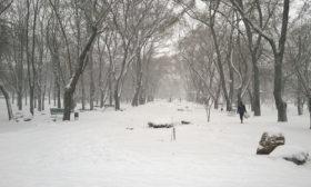Одесса, Парк Космонавтов
