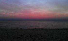 Собачий пляж