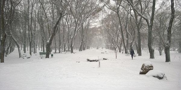 заснеженный Парк Космонавтов