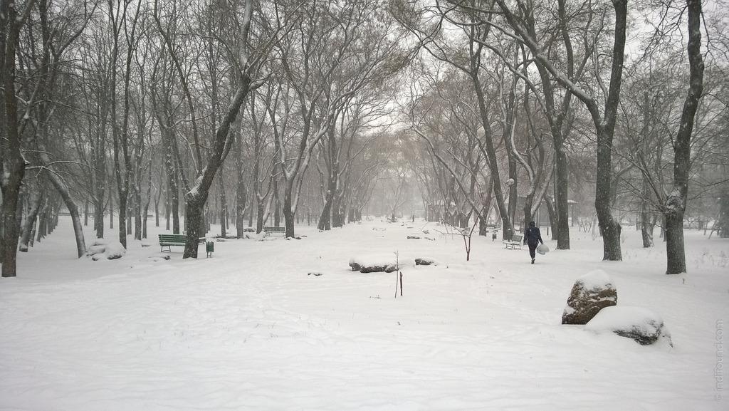 Парк Космонавтов Одесса зима снег