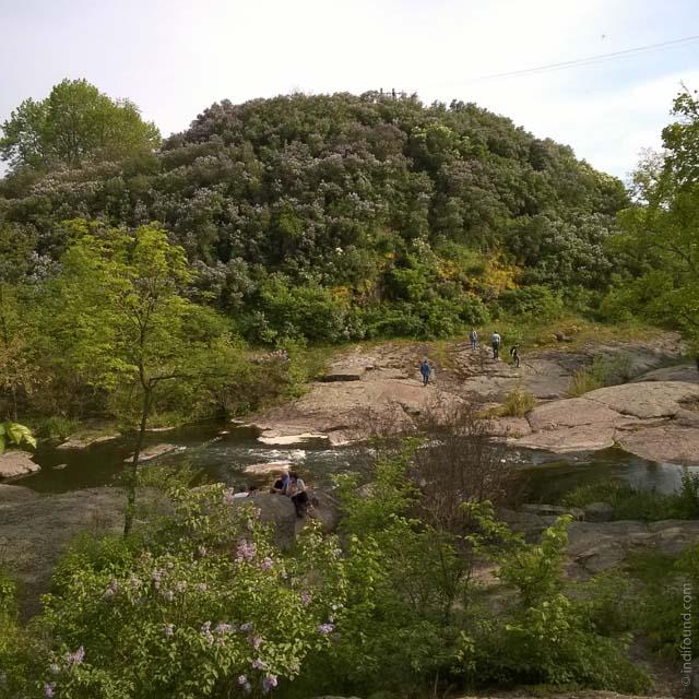 Корсунь-Шевченковский парк, сиреневый холм