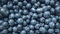 голубика blueberry фото