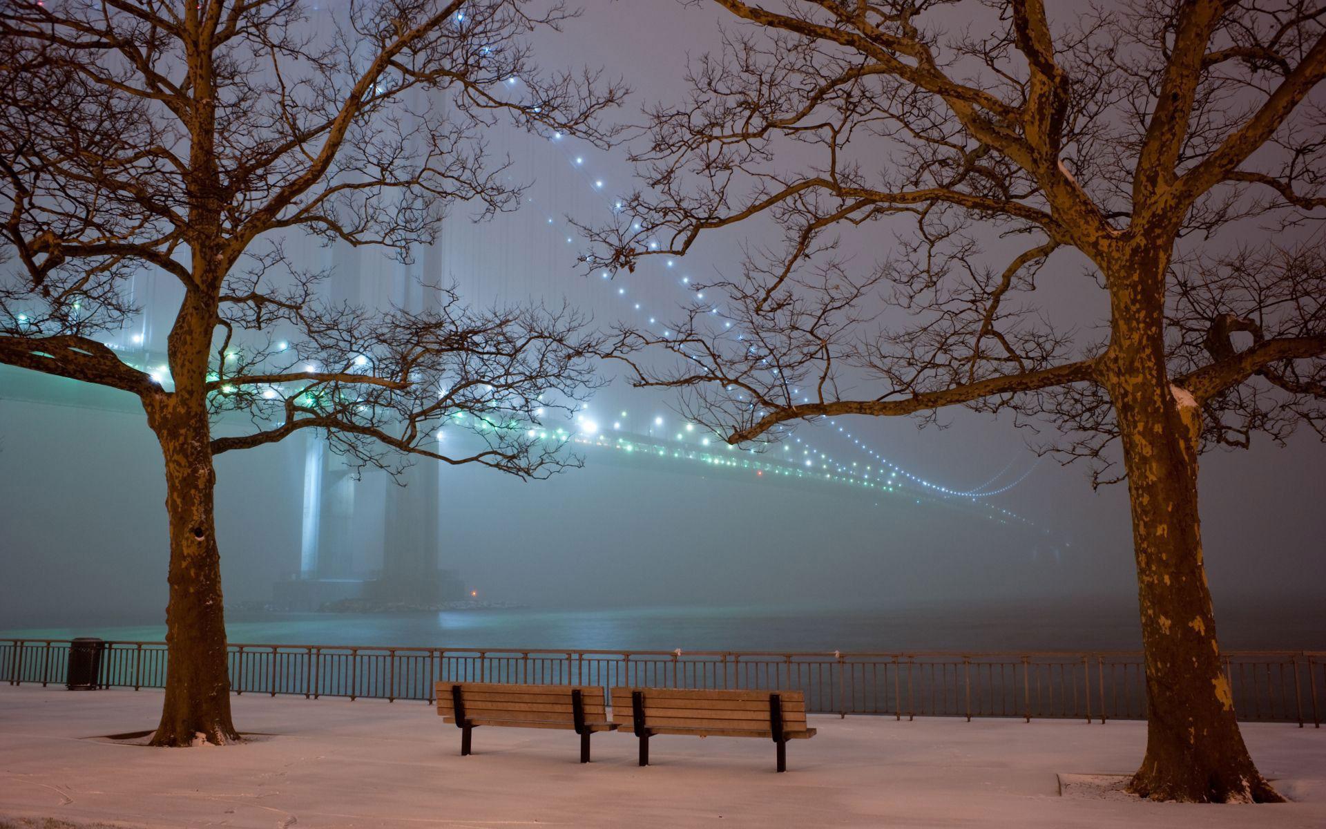 парк скамья мост в тумане с огнями успокаивающие картинки