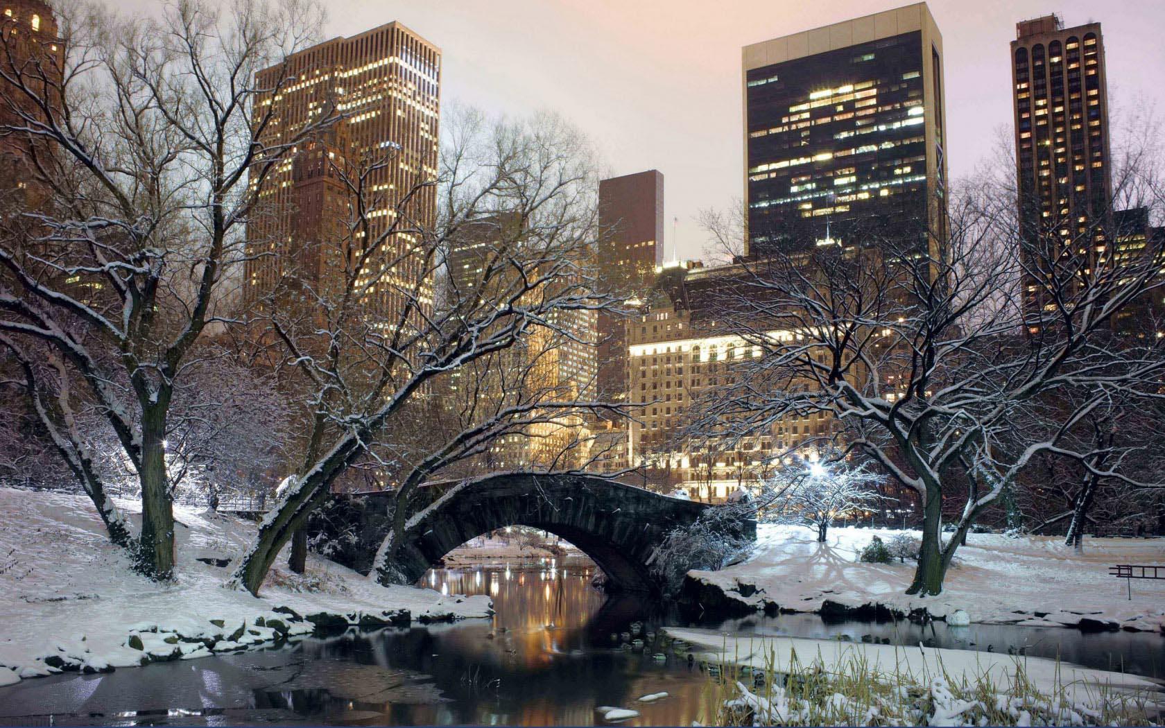 зима снег парк Нью Йорка