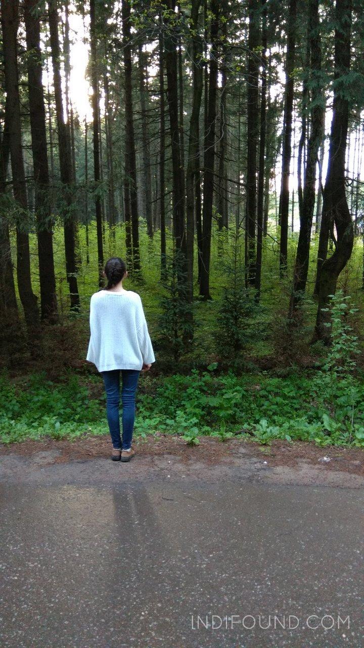Яна и лес