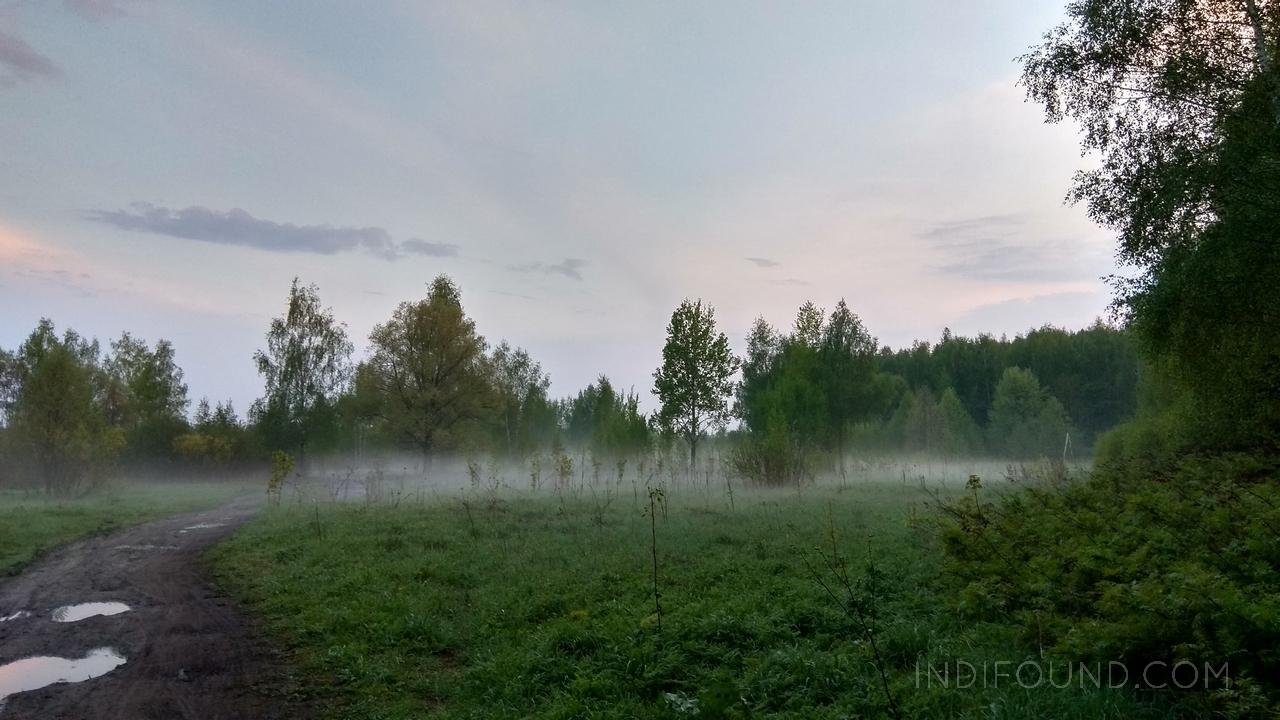 озеро торфянка, туман